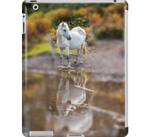 Horse Magic in reflection iPad Case/Skin