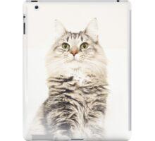Maine Coon iPad Case iPad Case/Skin