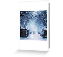 Beautiful Snow Storm in Central Park Greeting Card