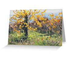Vineyard Gold Greeting Card