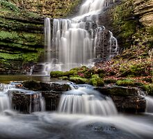 Scaleber Force by frostii77