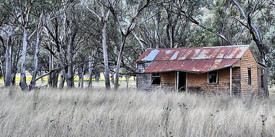 On the Road to Cassilis NSW Australia by Bev Woodman