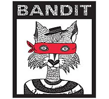 Bandit Brothers: Fox Photographic Print