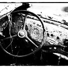 2013 Black & White by Kerri Gallagher