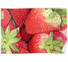 Strawberries in Coloured Pencil Poster