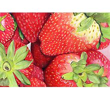 Strawberries in Coloured Pencil Photographic Print