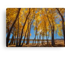 Skinny Fall - Wide Canvas Print