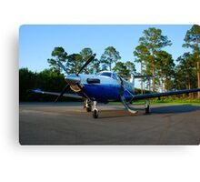 PC-12 Canvas Print