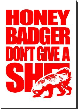 Honey Badger Don't Give A Shit (Red, light background) by jezkemp