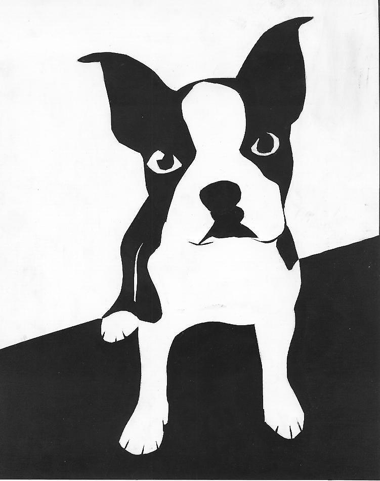 Boston Terrier  by fuzzybear123