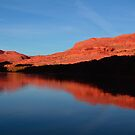 Red Rocks Reflected in the Colorado River by Tara  Turner