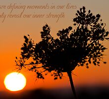Defining Moments by Teresa Hunt