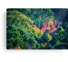 Autumn in the Hills   (EH) Canvas Print