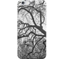 Blossoms In The Mist iPhone Case/Skin
