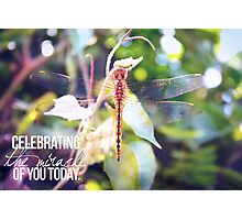 Celebrating the Miracle of You Today Photographic Print