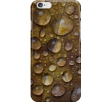 Fall Water Droplets iPhone Case/Skin