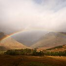 Somewhere Over the Rainbow by RoystonVasey