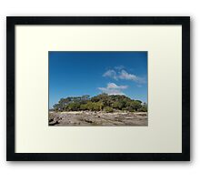 Trees under sky Framed Print