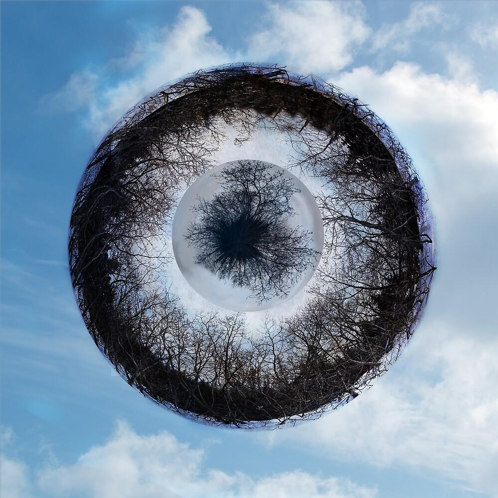 The Eye of Nature by mcornelius
