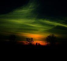 One Evening ! by Elfriede Fulda