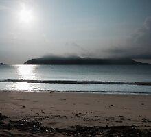 DUNK ISLAND by Hedoff