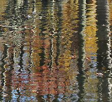 Autumn Reflections by enchantedImages