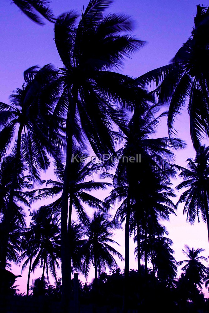 Sunset Palms by KerryPurnell