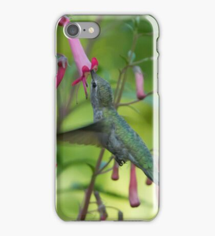 Hummingbird Feeding iPhone Case/Skin