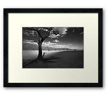 The Unforgiving Desert Framed Print