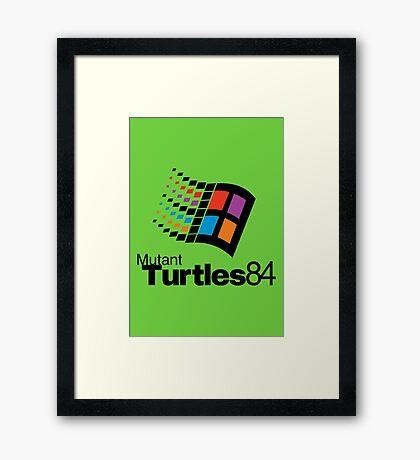 Turtles 84 Framed Print