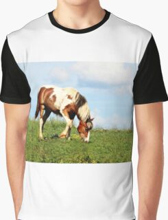 Rosarita Graphic T-Shirt