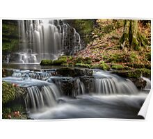 Scaleber Force Falls Poster