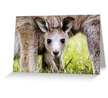 I have Eyes Only For You  ~ Joey Kangaroo ~ Greeting Card