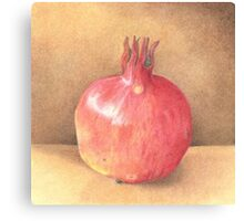 pomegranate - coloured pencil Canvas Print