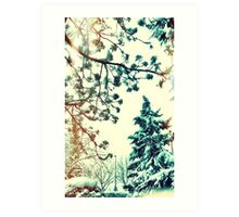 Winter Dream Art Print