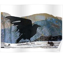 Something About Birds: Crow with White Feather Poster
