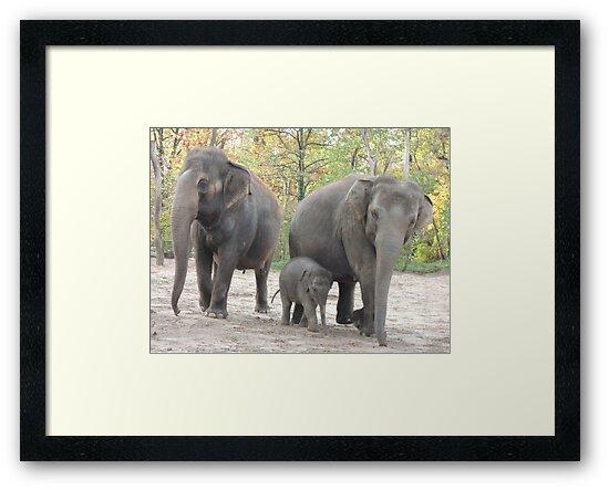 Elephant Family by CreativeEm