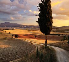 Val d'Orcia, Tuscany by Matteo Colombo