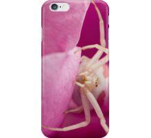 White Spider in Pink Flower iPhone Case/Skin