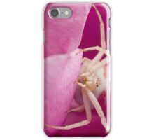 White Spider in Pink Flower iPhone Case/Skin
