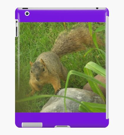 Being Chased By A Squirrel  iPad Case/Skin