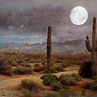 Desert Moon by Susan Werby
