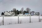 White Farm on a Gray Winter Day by Gene Walls