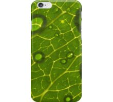 Water Drops on Leaf iPhone Case/Skin