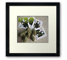 MARIJUANA 420 Framed Print