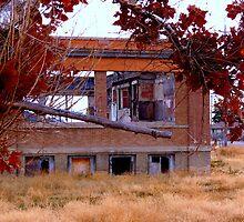 Houston School....Deterioration by trueblvr