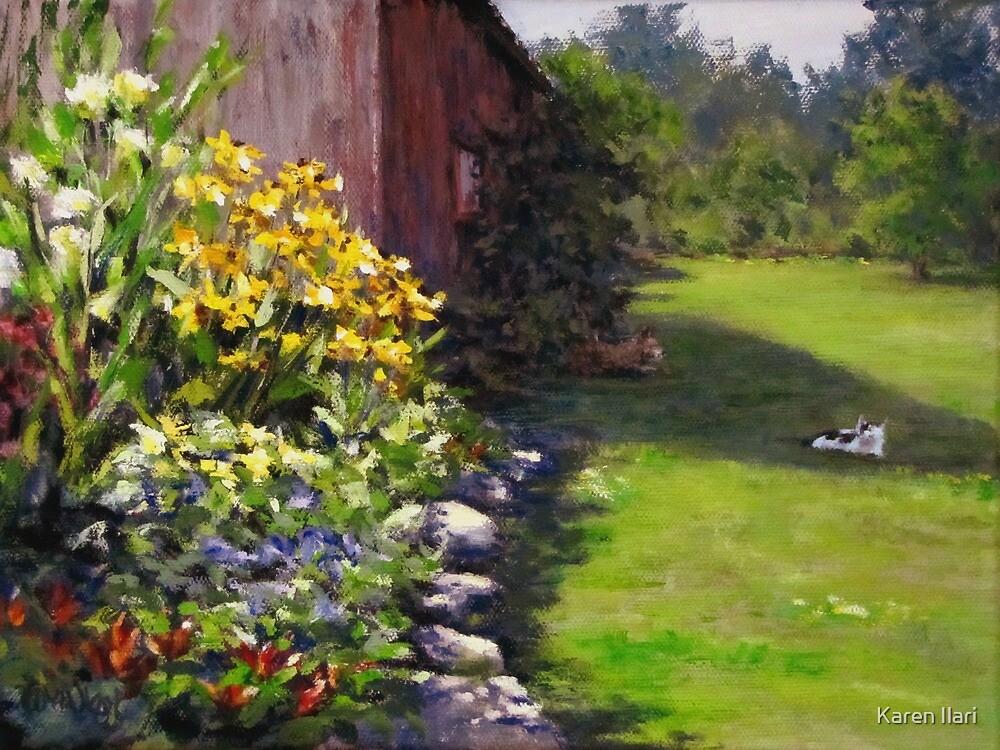 Abundance by Karen Ilari