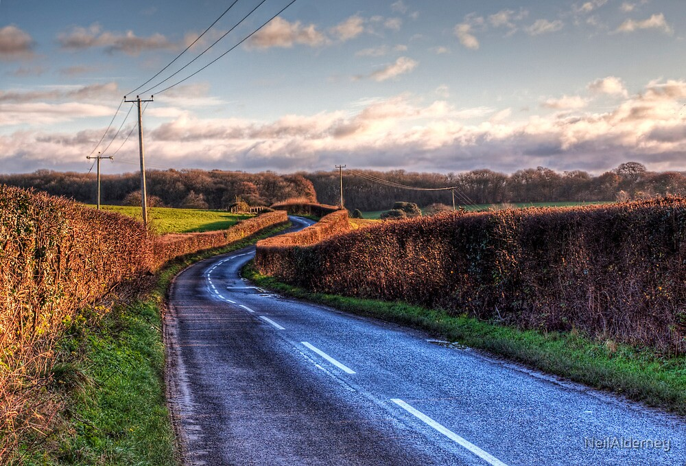 A country lane in Winter, near Winchester, Hampshire by NeilAlderney