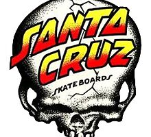 Santa Cruz Skull by James022