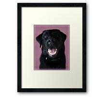 Smiler Framed Print